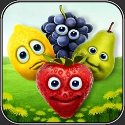 Fruit Mill