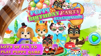 Puppy Birthday Party Celebration