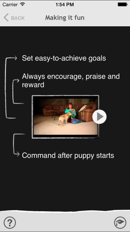 Puppy Coach 101 screenshot-3