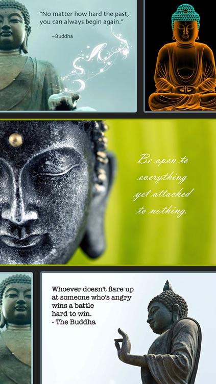 Inspirational & Motivational Buddha Quotes Wallpapers screenshot-4