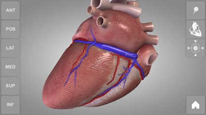 心臓解剖 Heart 3D Atlas of Anatomyのおすすめ画像2