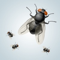 Codes for Annoying Fly App Hack