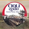 Cioli Egidio S.r.l.
