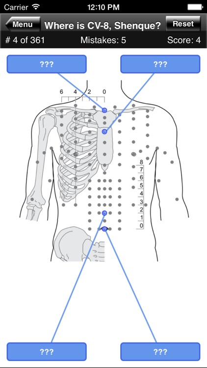 Acupuncture Points Body Quiz