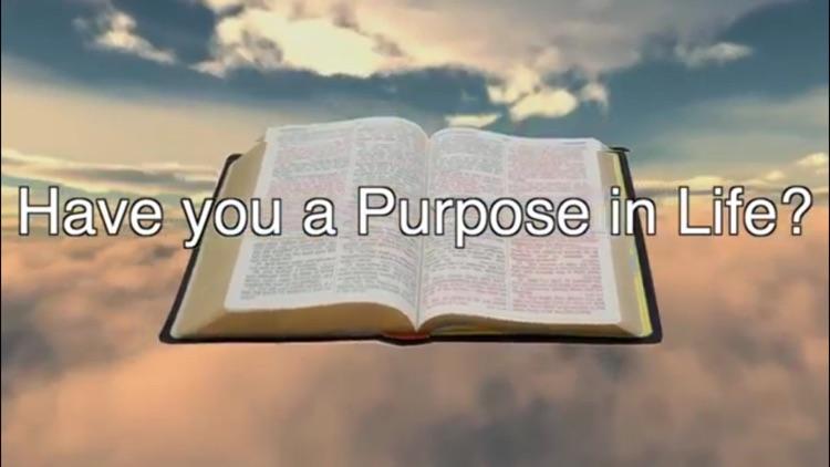 Understanding The Bible screenshot-4