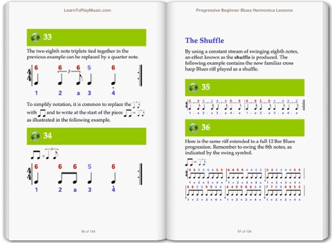 Blues Harmonica Lessons for Beginners by LearnToPlayMusic com on Apple Books
