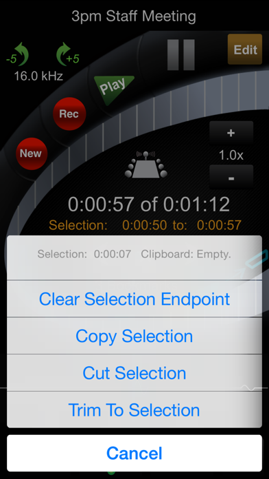 HT Professional Recorder ScreenShot2