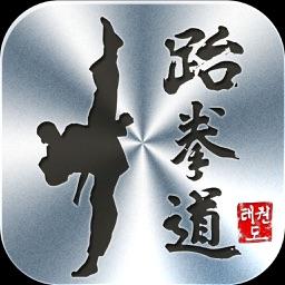 Teakwondo Master Color Belt