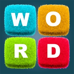 Word Search New