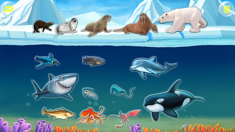 Amazing Ocean Animals- Educational Learning Apps for Kids screenshot-0