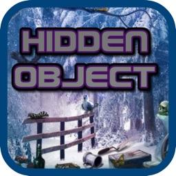 Hidden Object Frozen Treasures