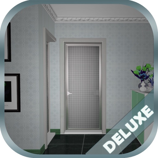 Can You Escape Crazy 11 Rooms Deluxe