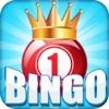 Bingo Dash Pro - Las Vegas House Of Fun