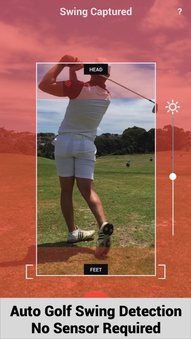 Swing Profile