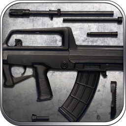 QBZ-95: Automatic Rifle, Simulator, Trivia Shooting Game - Lord of War