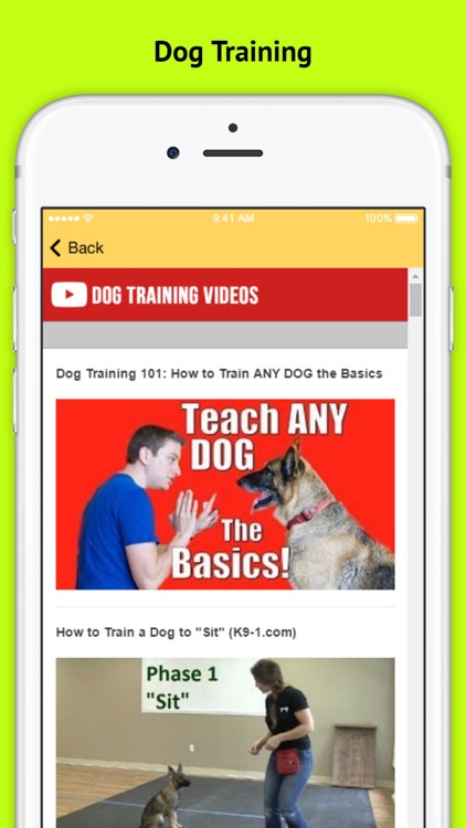 Dog Obedience Training - Basic Commands