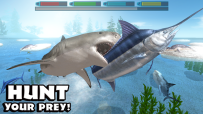 Ultimate Shark Simulator-1