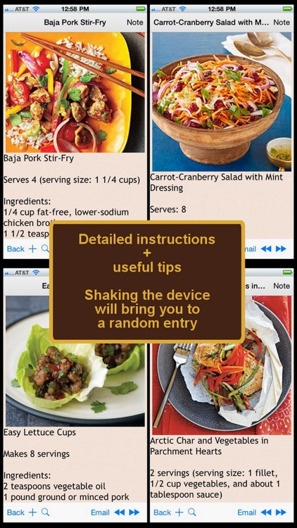 Ultra Low Fat Diet Recipe Plus+