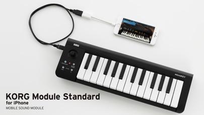 KORG Module Standard ... screenshot1