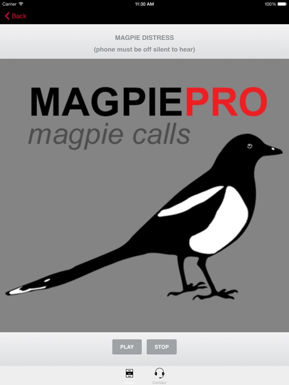 REAL Magpie Calls for Hunting -Magpie Sounds! + (ad free) BLUETOOTH COMPATIBLE screenshot-0
