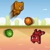 Red Fox & Honey Bear Hop Across Forest and Desert