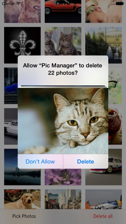 Pic Manager - Fast Delete