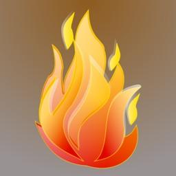firebox browser