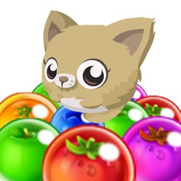 Kitty Bubble Pop GO : Newest Bubble Shooter Pet Recure Puzzle HD 2016
