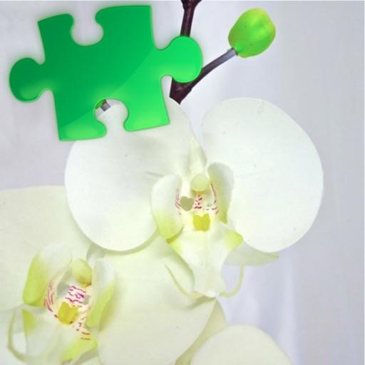 Plants Puzzles Studio