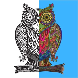 Adult Coloring Book - Animals and Birds Edition