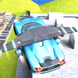 Flying car the real Racing Fever