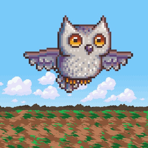 Owl Dash