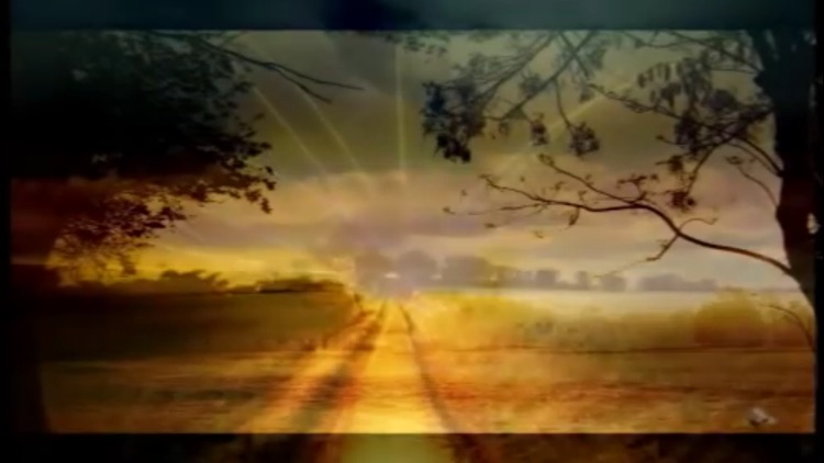 Reiki Music screenshot-3