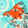 泡になった金魚