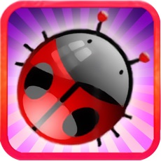 Activities of Bugs Smasher: Tap to Kill Puzzle Game