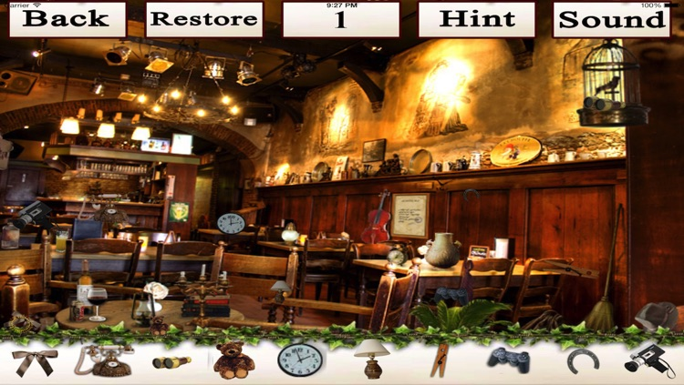 Hidden Objects!!!!! screenshot-1