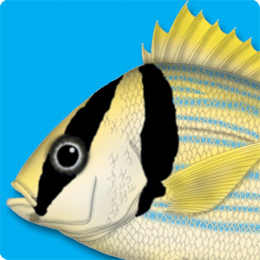 Marine Fishes - Identification Guide for iPad