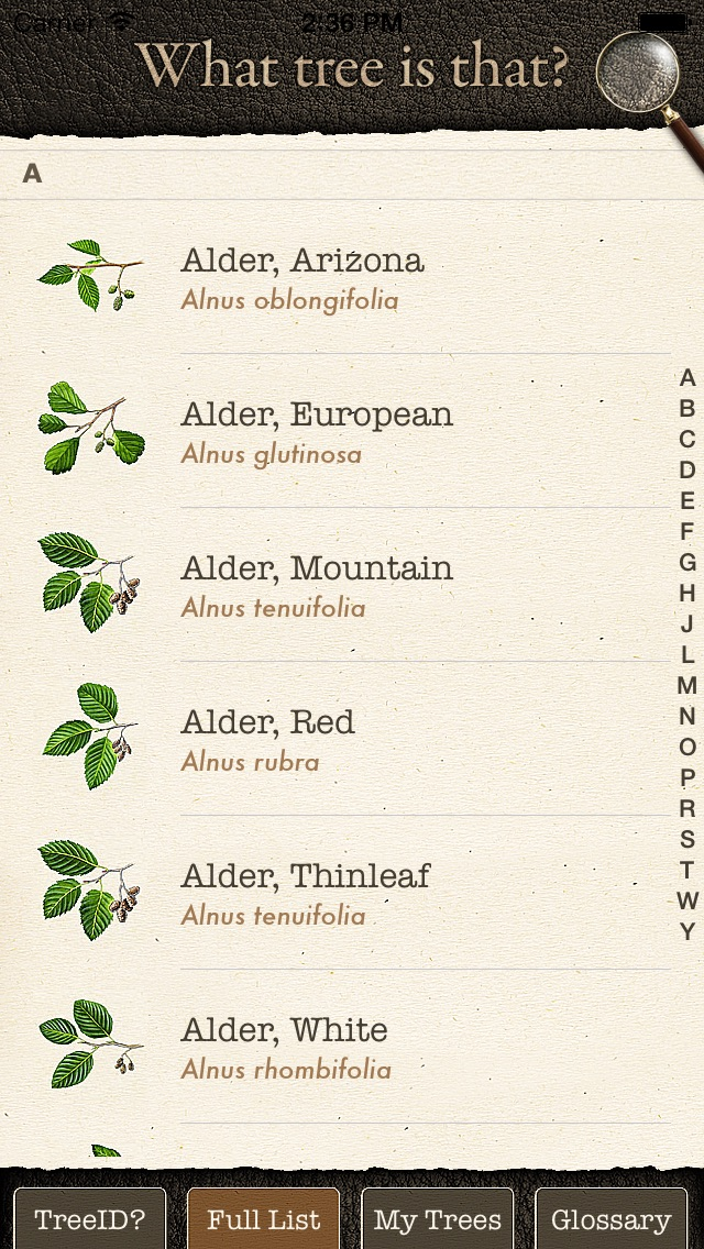 Arbor Day Tree Identification Guide: What Tree ... iPhone