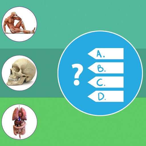 Anatomy, Physiology Quiz and Glossary for iPhone