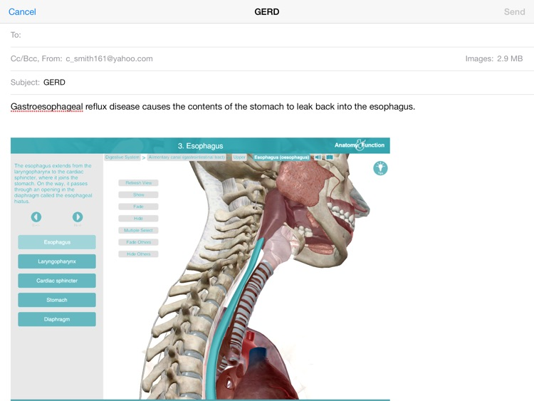 Anatomy & Function: A 3D Visual Reference of the Human Body screenshot-4