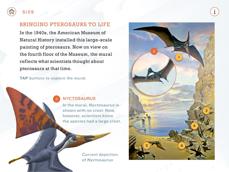 Pterosaurs: Flight in the Age of Dinosaurs screenshot-3