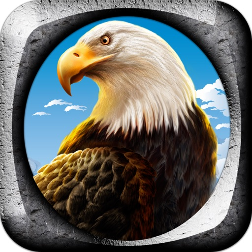 Eagle Flight Control Pro Game Full Version icon