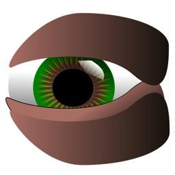 Celeb Eyes Puzzle - Guess the Celebrity Icon Photo Trivia IQ Test - Eye to Eye Quiz