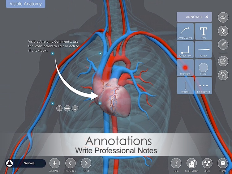 Visible Anatomy screenshot-3