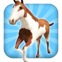 A Horse Ride: Wild Trail Run & Jump Game - FREE Edition