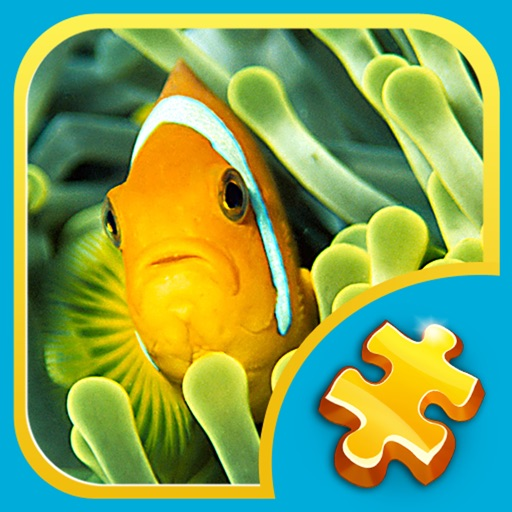 Jigsaw Puzzles 3 in 1