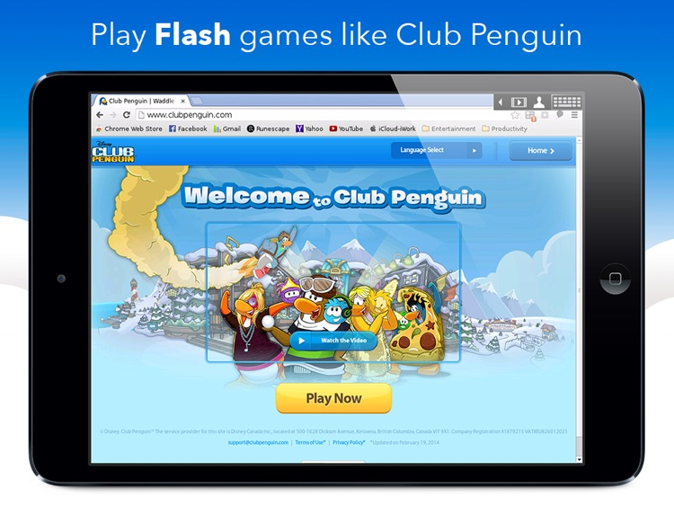 VirtualBrowser for Chrome + Flash Player, Java & Browser Extensions - iPad Edition
