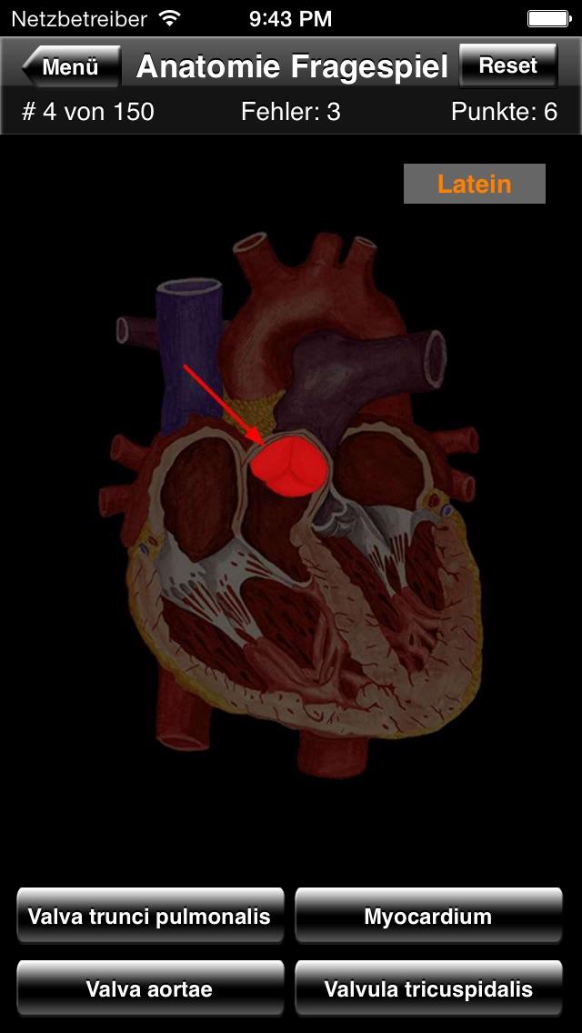 Anatomie FragespielScreenshot von 2