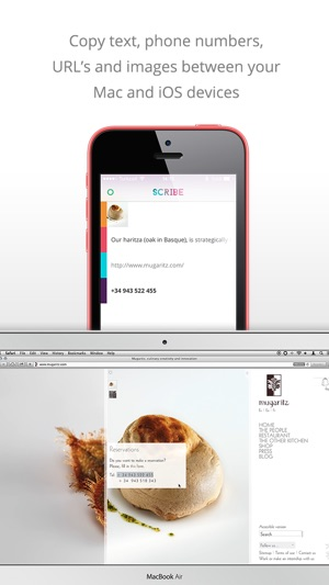 Scribe - Copy anything from your Mac to your iPhone Screenshot