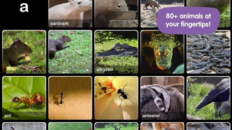 ABC Wildlife screenshot-0